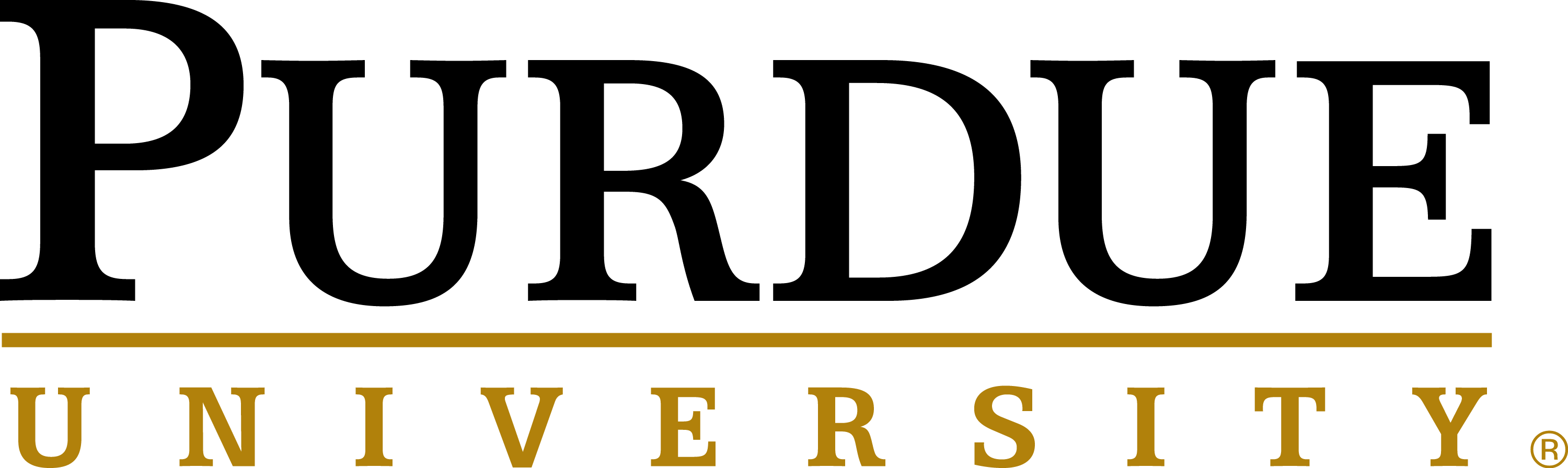 https://www.nawboindy.org/wp-content/uploads/Purdue-Sig-Black-Gold-rgb-1.png